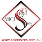 select-sires-sponsor-logo-150x150